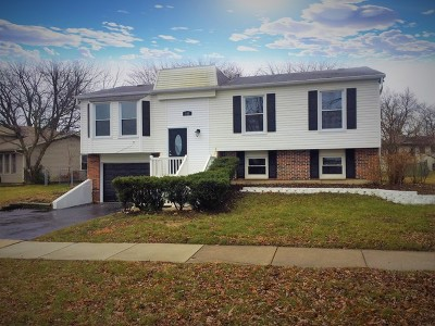 Bolingbrook Single Family Home For Sale: 143 Wedgewood Way