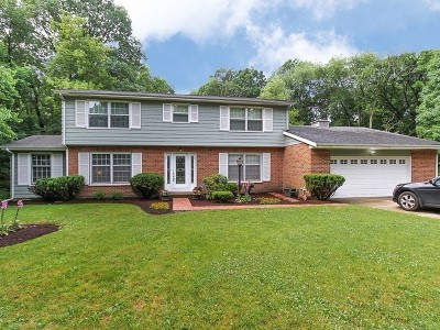 Dundee Single Family Home For Sale: 36w487 Oak Hill Drive
