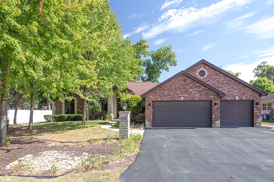 Palos Heights, Palos Hills Single Family Home New: 12417 South Nagle Avenue