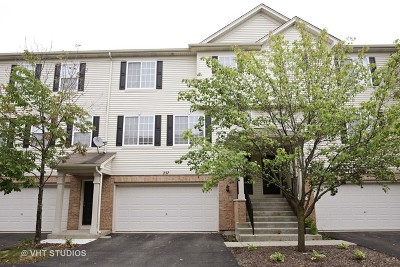 Gilberts Condo/Townhouse For Sale: 257 Evergreen Circle #257