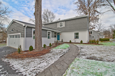 Naperville Single Family Home For Sale: 309 White Oak Drive