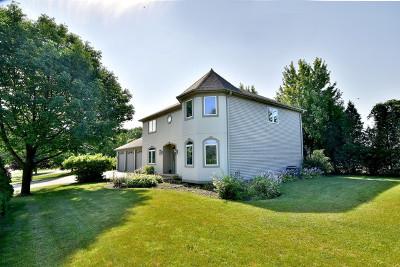 Burr Ridge Single Family Home New: 15w761 74th Street