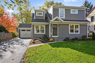 Glen Ellyn Single Family Home For Sale: 383 Elm Street
