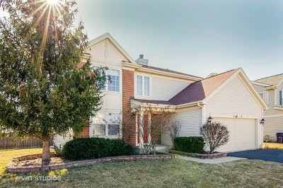 Elgin Single Family Home For Sale: 1677 Montclair Drive