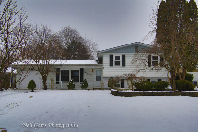 Carol Stream Single Family Home For Sale: 522 Apache Lane