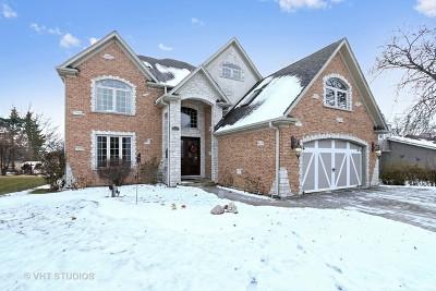 Lake Villa, Lindenhurst Single Family Home For Sale: 2333 Federal Parkway