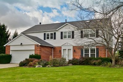 Mundelein Single Family Home For Sale: 25762 North Eagle Drive