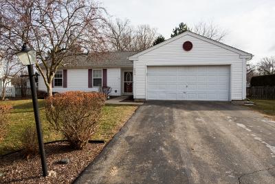 Island Lake Single Family Home For Sale: 4026 Hale Lane