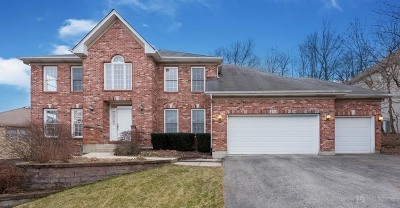 Bolingbrook Single Family Home Contingent: 432 Delaware Circle