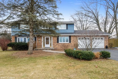 Naperville Single Family Home New: 28w103 87th Street