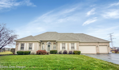 Plainfield Single Family Home For Sale: 17431 South Honora Drive