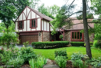 Naperville Single Family Home For Sale: 425 South Charles Street