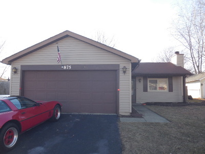 Aurora Single Family Home New: 875 Camden Lane