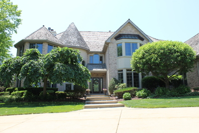 Orland Park Single Family Home For Sale: 85 Windmill Road