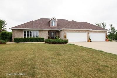 Monee Single Family Home New: 10960 Saddle Drive