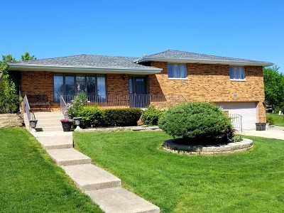 Homer Glen Single Family Home New: 13537 South Tara Drive