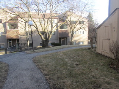 Fox Lake Condo/Townhouse New: 58 Vail Colony #4