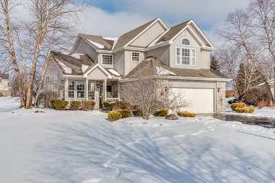 Orland Park, Tinley Park, Evergreen Park, Oak Lawn, Matteson, Olympia Fields, Flossmoor, Frankfort, Country Club Hills, Richton Park, Palos Heights, Palos Park, Palos Hills, Orland Hills, Homewood, Crestwood Single Family Home New: 21397 Chadwick Court