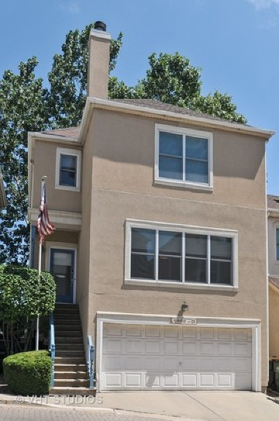 Chicago Condo/Townhouse New: 1800 West Diversey Parkway #D