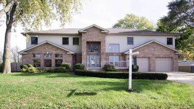 Orland Park Single Family Home New: 16621 South 88th Avenue
