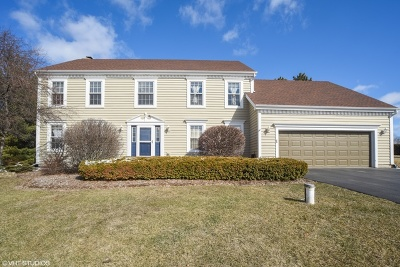McHenry Single Family Home For Sale: 7404 Burning Tree Drive
