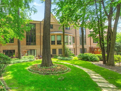 Hinsdale Condo/Townhouse For Sale: 1302 Hawthorne Lane #1302