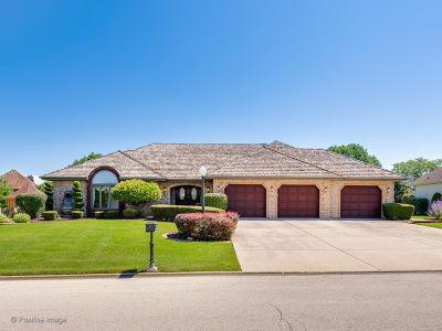 Homer Glen Single Family Home New: 16847 Comandra Circle
