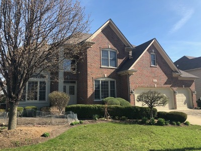 Naperville Single Family Home For Sale: 6011 Rosinweed Lane