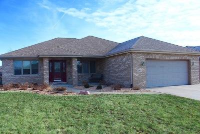 New Lenox Single Family Home New: 2365 Bluestone Bay Drive