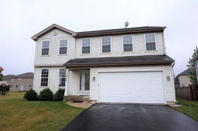 Carpentersville Single Family Home For Sale: 5404 Cleary Court