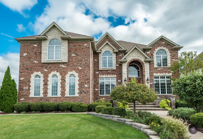 Naperville Single Family Home New: 2504 Skylane Drive