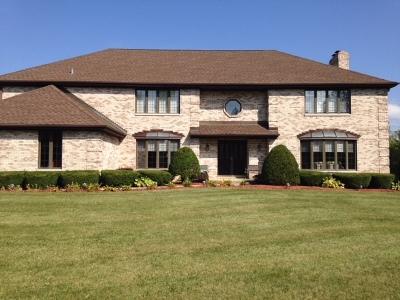 Homer Glen Single Family Home New: 15862 West 143rd Street