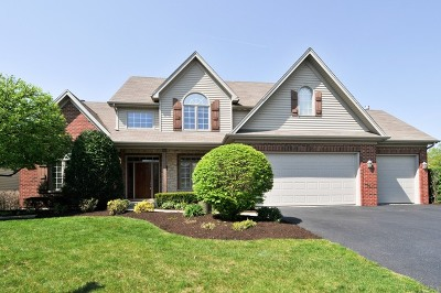Naperville Single Family Home For Sale: 5744 Rosinweed Lane