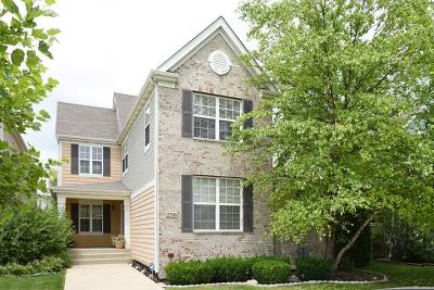 Elgin Single Family Home New: 276 Longview Drive