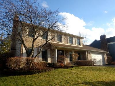 Wheaton Single Family Home For Sale: 155 Christina Circle
