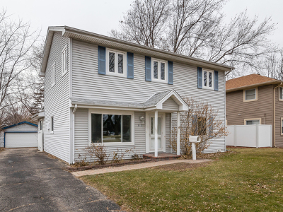 Mount Prospect Single Family Home For Sale: 312 North William Street North