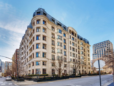 Chicago Condo/Townhouse New: 65 East Goethe Street #4N