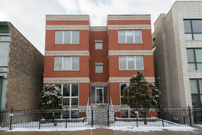 Chicago Condo/Townhouse New: 1434 North Wood Street #1N