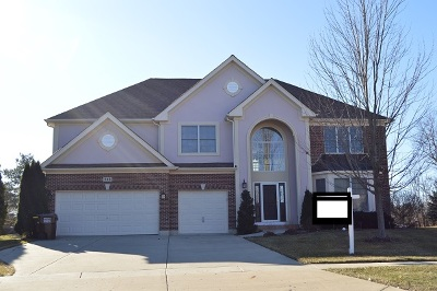 Crystal Lake Single Family Home New: 713 Goldenrod Court