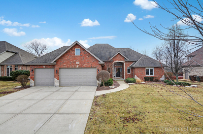 Frankfort Single Family Home New: 8578 Hotchkiss Drive