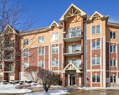 Niles Condo/Townhouse New: 8120 West Park Avenue #303