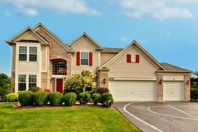 Lake Villa, Lindenhurst Single Family Home For Sale: 1545 McClellan Drive