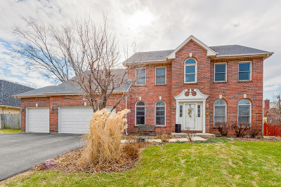 Glen Ellyn Single Family Home For Sale: 775 Wilson Avenue