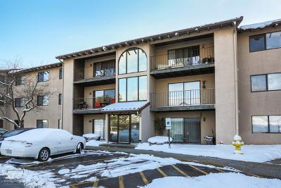Lombard Condo/Townhouse New: 21w581 North Avenue #47