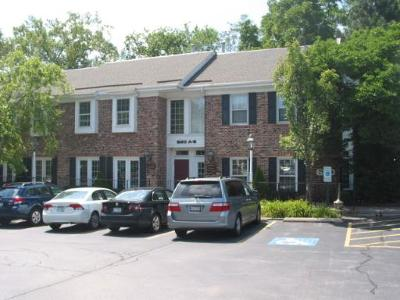 Wheaton Commercial For Sale: 620 West Roosevelt Road #A2