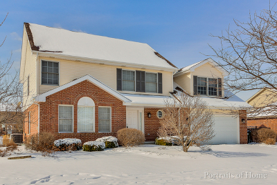 Tinley Park Single Family Home New: 17600 Webster Court