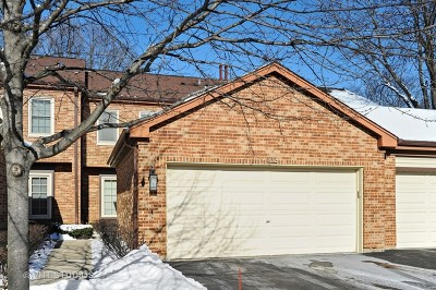 Arlington Heights Condo/Townhouse New: 1632 North Windsor Drive
