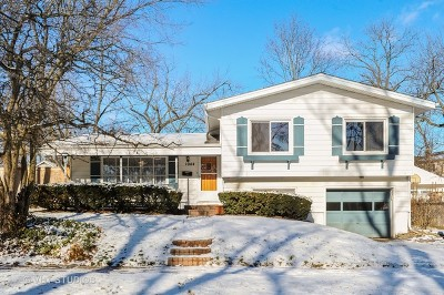 Deerfield Single Family Home For Sale: 1044 Somerset Avenue