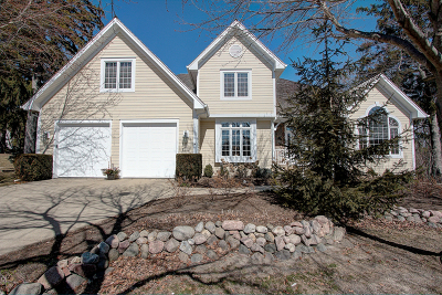 Libertyville Single Family Home For Sale: 319 Carriage Hill Circle