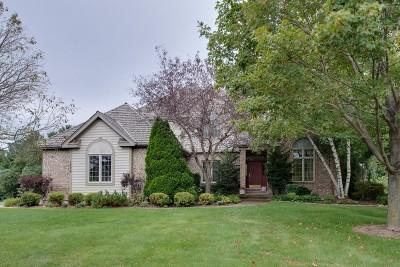 Antioch Single Family Home For Sale: 1538 Eagle Ridge Drive